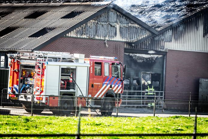 Een brand in een koeienstal in Someren.