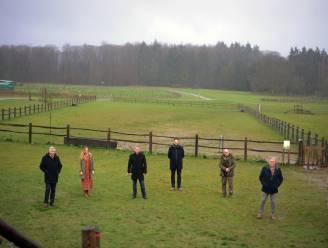 """Project WALDEN gaat Brabantse wouden en valleien verbinden: """"Een win-winsituatie voor natuur én werkgelegenheid"""""""