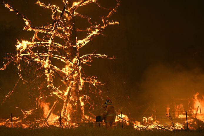 Een huis en boom in Bilpin in de buurt van Sydney gaan in vlammen op.
