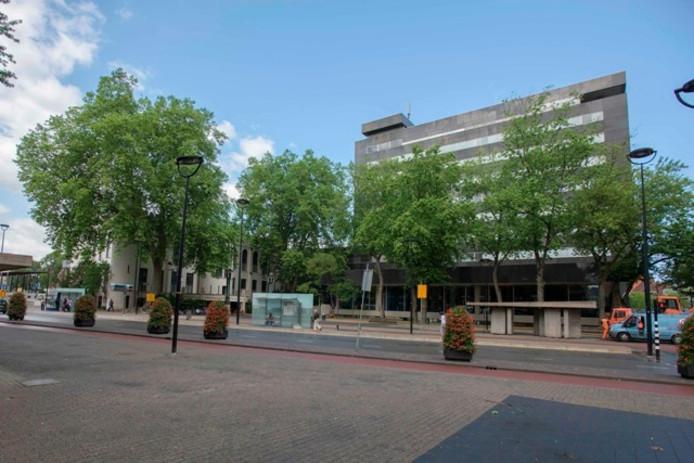 De platanen links op de foto blijven, de rest van het groen rond het stadhuis sneuvelt. Foto Joris Buijs/BeeldWerkt