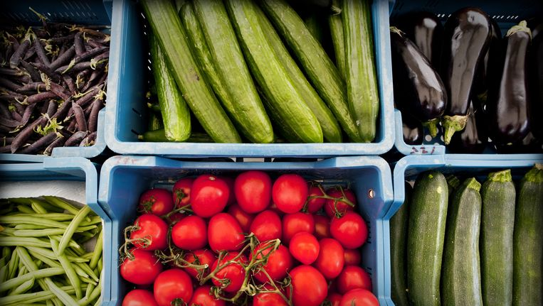 De Europese Unie komt tuinbouwers tegemoet die nadelige gevolgen ondervinden van het Russische invoerverbod op hun producten. Beeld ANP
