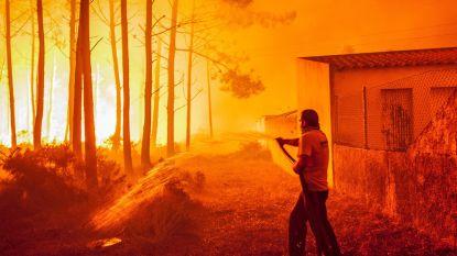 2017 een van duurste schadejaren ooit door natuurrampen