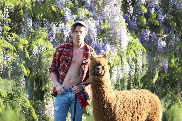 Mike Piek (27) uit Kampen tijdens de fotoshoot voor de allereerste Alpaca en Hunk-kalender.