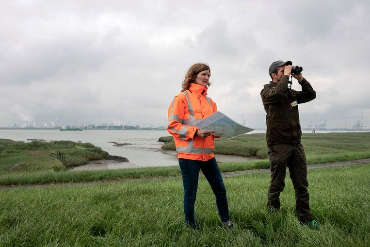 Monique Ekkebus van de provincie Zeeland en Pepijn Calle van Het Zeeuwse Landschap bekijken het resultaat van de eerste werkzaamheden om het gebied te ontpolderen. Beeld Merlin Daleman