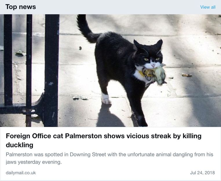Palmerston is groot nieuws in de U.K..