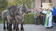 Paarden- en hondenzegening in Oostnieuwkerke
