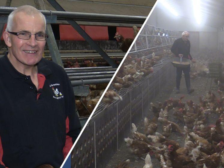 Boer vreest voor zijn kippen door vogelgriep: 'Ik heb begrip voor ophokplicht'