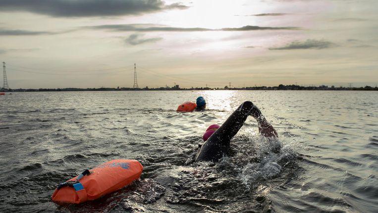 Onder leiding van Michiel Land zwemmen een aantal mensen naar het vuurtoreneiland in het IIsselmeer. Beeld Sander Nieuwenhuys