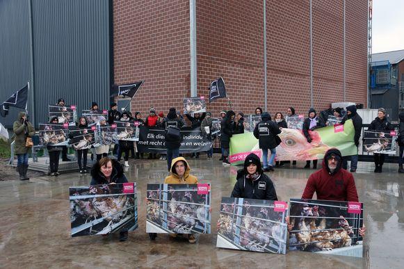 Animal Rights voerde actie voor de stal.