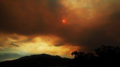 Honderden op de vlucht voor bosbranden op Tasmanië