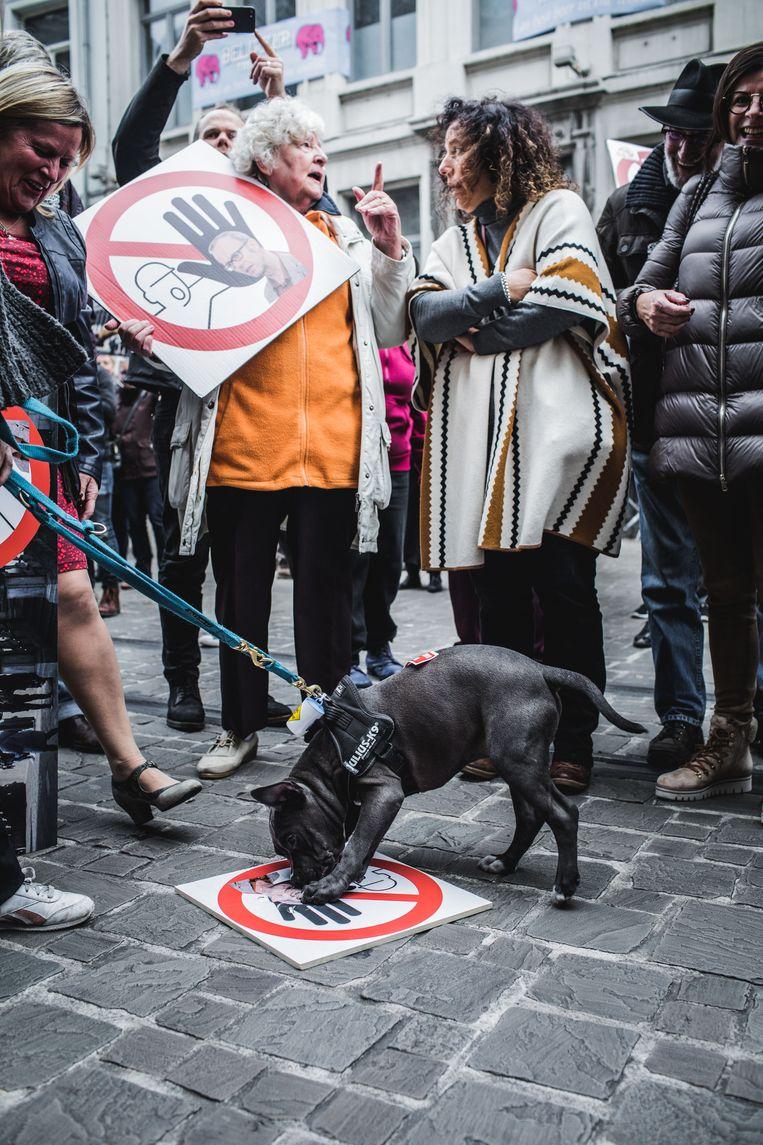 Een hond bijt een affiche met een beeltenis van Watteeuw aan stukken.