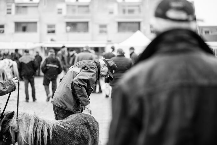 De Goorse fotografe Barbara Trienen heeft eerder een impressie gemaakt van de paardenmarkt. Zij koos haar favoriete beeld van de 'wintermarkt', zoals het eeuwenoude evenement ook wordt genoemd.
