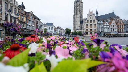 Mechelen bundelt alle coworkingplekken op één website