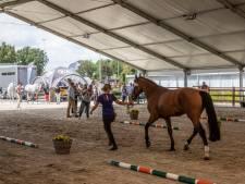 De paarden krijgen voorrang op Longines Global Champions Tour in Valkenswaard