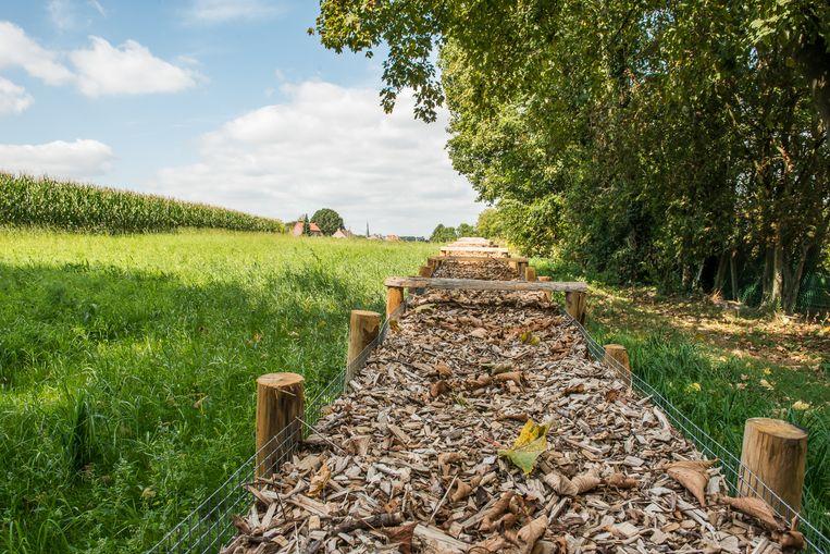 De erosiebestrijdingswerken aan de Kwadeplasstraat in Sint-Genesius-Rode zijn klaar.