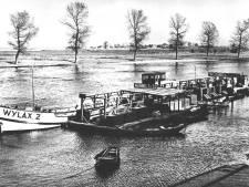 Visverwerker Wylax uit Raamsdonksveer failliet verklaard