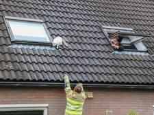 Brandweer Emmeloord spuit poes Saar van het dak