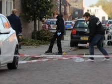 Duitser (36) opgepakt voor hamermoord in Winterswijk
