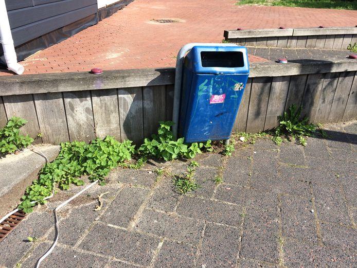 Onkruid in de gemeente Capelle aan den IJssel.