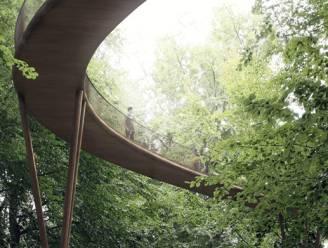 Wandelen tussen boomkruinen in Zoniënwoud nog niet voor meteen: 20 meter hoog wandelpad loopt forse vertraging op