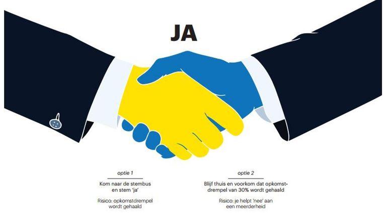 Opties voor de ja-stemmer. Beeld Trouw