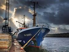 CDA houdt actie voor pulsvissers
