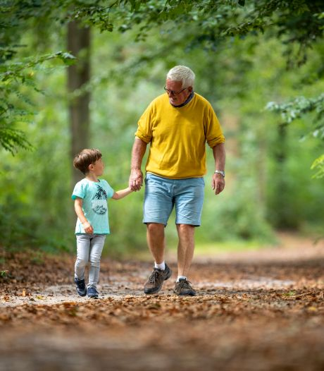 Hoe onze bossen in korte tijd veranderen: 'Als je kleinzoon zelf opa is, wandelt hij over een heel andere Veluwe'