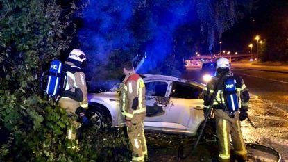 Dief crasht met gestolen wagen vlakbij  de grens: voertuig brandt uit