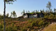 WOONVIDEO. Anke en Geert bouwden op een Noorse berg een stoere hut met een oergezellig designinterieur