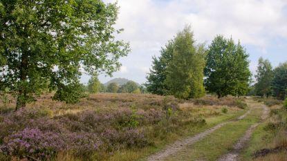 Nationaal park Hoge Kempen is (nog) geen Werelderfgoed