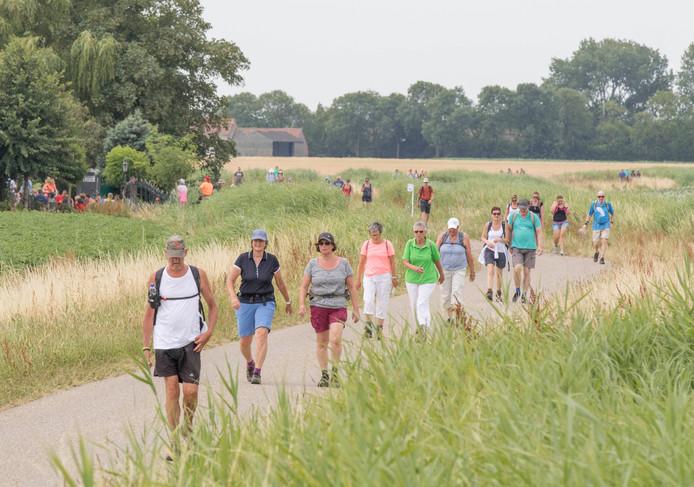 Wandelaars komen vanaf Poortvliet.