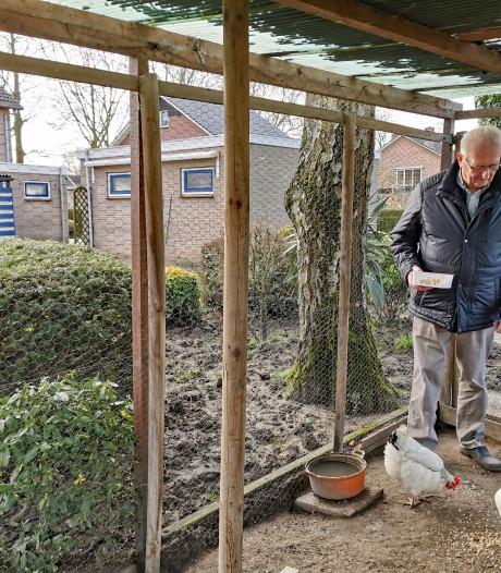 Piet (82) zit vast in zijn te grote huis met te grote tuin: De kleine huizen zijn op