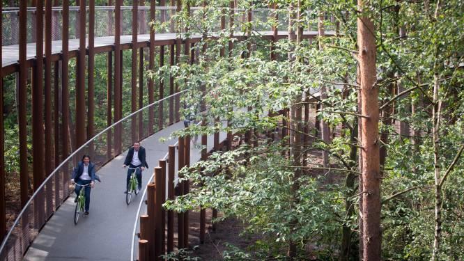 Weer een nieuwe bekroning voor 'Fietsen door de Bomen' op Staalbouwwedstrijd