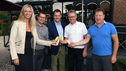 """Kampenhout en Haacht organiseren kookwedstrijd rond 'witte goud': """"Wie heeft het beste witloofrecept?"""""""