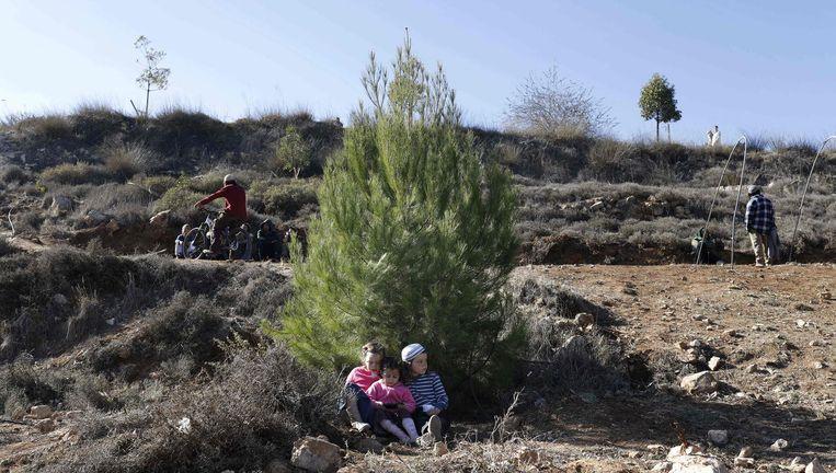 Kinderen van Joodse kolonisten in de buitenpost Amona. Beeld afp