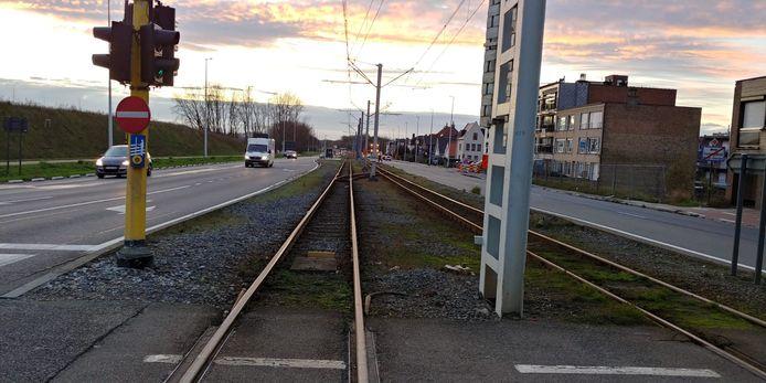 De spoorbedding in Zeebrugge wordt een heel stuk groener, wat de aantrekkelijkheid moet verhogen.