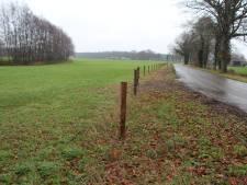 Palenlint moet einde maken aan landjepik in Berkelland