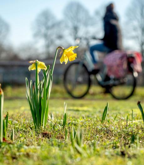 Somber januari eindigt warm: 'Voelt als lente'