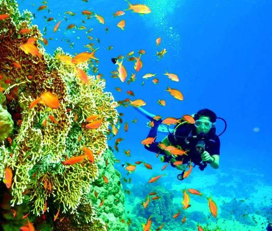 Op een uur varen van de kust vinden duikers en snorkelaars talloze ongerepte koraalriffen in het heldere blauwe of groene water.