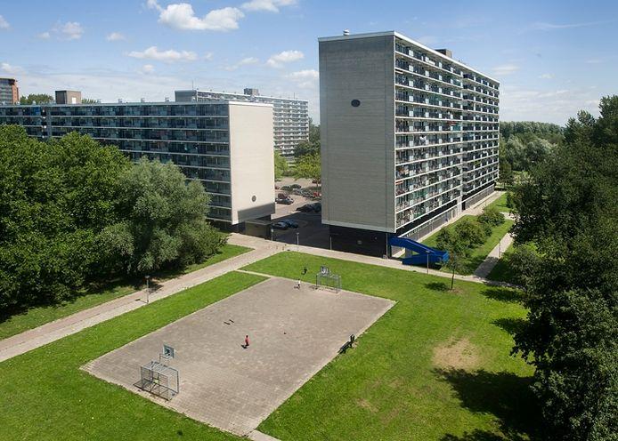 De massieve jarenzestigflats in de Arnhemse wijk Immerloo II. Foto: Marina Popova