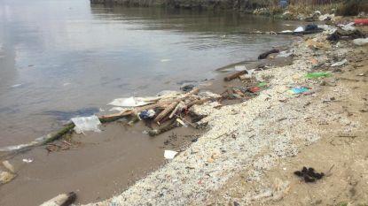 Schelde krijgt plasticvangers om afval tegen te houden voor het in zee spoelt