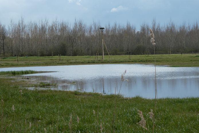 De Rouw Bommel, een nieuw plas-drasgebied in Liempde voor uitbreiding van de natuur.