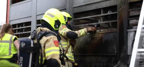 Varkens overleden bij brand in vrachtwagen, flinke vertraging op A50 bij Heelsum