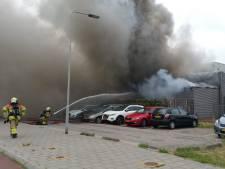Dit jaar al zes wietkwekerijen ontdekt na brand in de regio