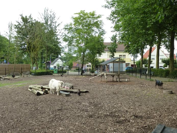 Bij dit dierenpark in Aalst werden maandag dieren bekogeld met stenen.