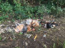Resten van geslachte kippen gevonden in de berm in Silvolde