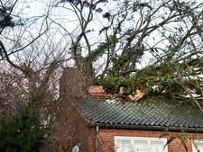 Topdrukte voor dakdekkers en glaszetters na storm van donderdag