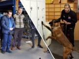 Brabantse Koen traint honden voor de Verenigde Naties