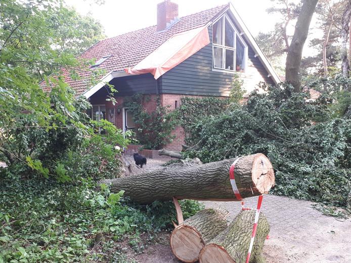 Een flinke tak kwam op het dak van het huis van de familie Kampman terecht.