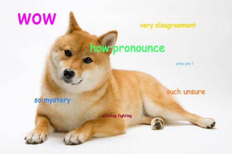null Beeld Doge